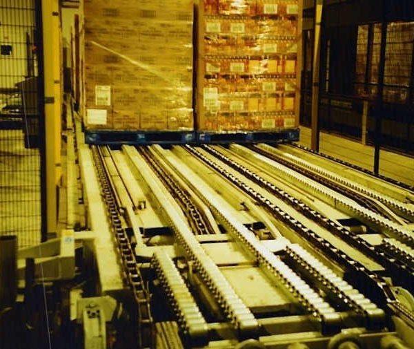 Raised link conveyor